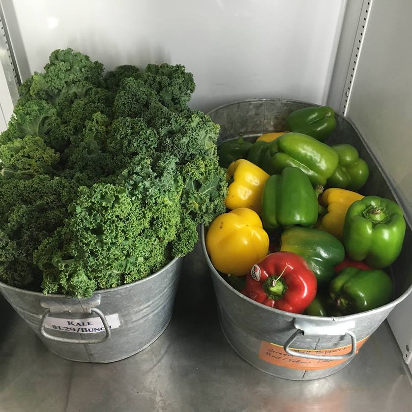 Peppers and kale from Carter and Sons Produce