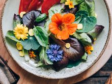 Beautiful, colorful plate of healthy food