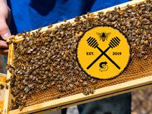 Subway® Headquarters is abuzz…with honeybees!